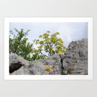 A yellow small tree Art Print