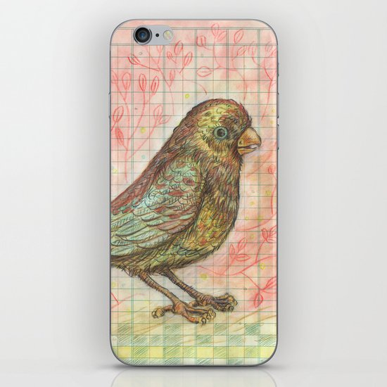Bird on a Budget iPhone & iPod Skin