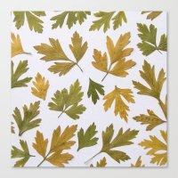 Parsley Autumn Canvas Print