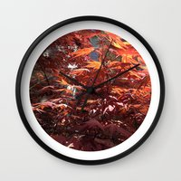 Planetary Bodies - Japanese Maple Wall Clock