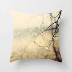 January rain Throw Pillow