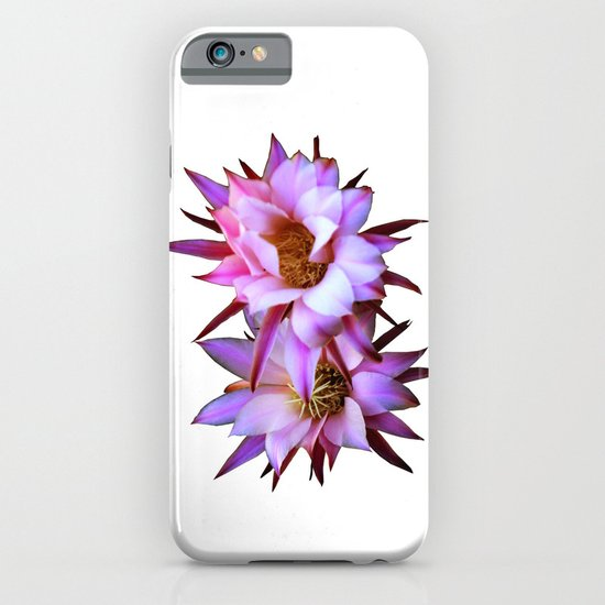 Purple cactus blossom iPhone & iPod Case