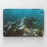 Mexican Caribbean Sealife iPad Case