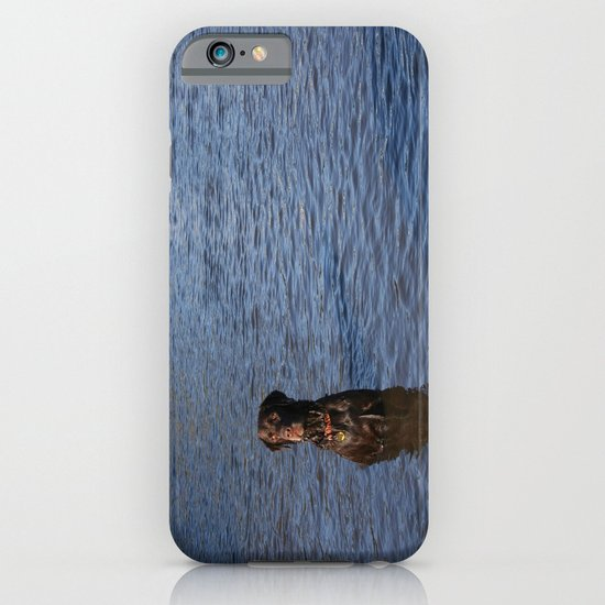 Wet Dog iPhone & iPod Case