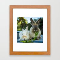 Wabbits  Framed Art Print