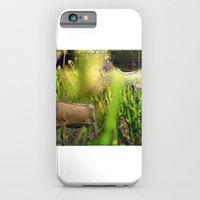 iPhone & iPod Case featuring Summer Love by Sara E. Lynch