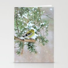 Lost in Time: April Snowstorm Stationery Cards