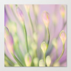Lavender Nile Canvas Print