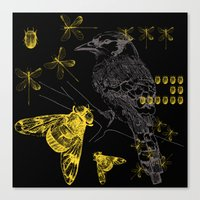 Bird & Beetles Canvas Print