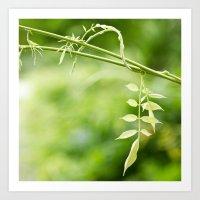 The Little Leaves Art Print