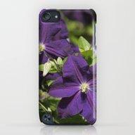 Longwood Gardens - Sprin… iPod touch Slim Case