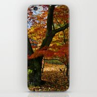 Red Autumnal Leaves iPhone & iPod Skin