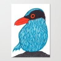 Blue Magpie Canvas Print