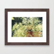 nature 1 Framed Art Print