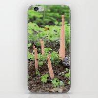 Dirt iPhone & iPod Skin