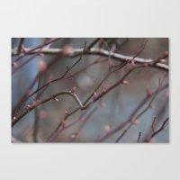Spring I Canvas Print