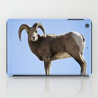Bighorn Sheep iPad Case