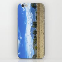 Puebla iPhone & iPod Skin