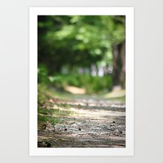 Walking your Path Art Print
