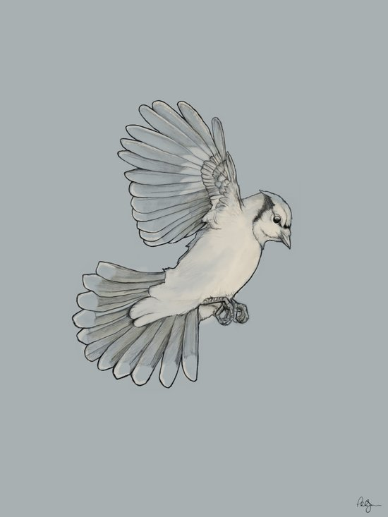 Dynamic Flight Art Print