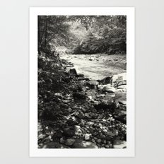 Speckled Creekside Art Print