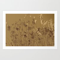 Thin Branches Sepia Art Print