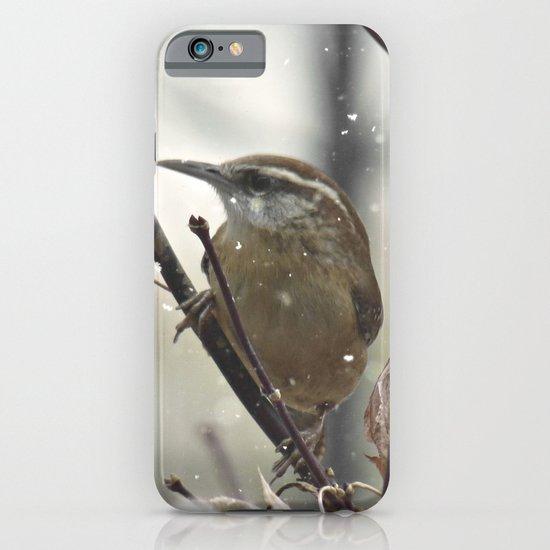 Carolina Wren in Winter iPhone & iPod Case