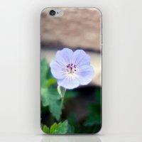 Meadow Cranesbill II iPhone & iPod Skin
