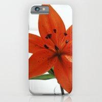 Embrace iPhone 6 Slim Case