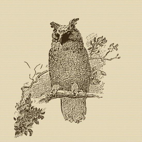 Vintage Owl Art Print