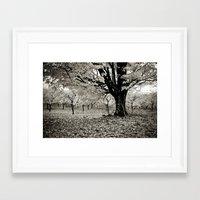 Wind and Leaves - B&W Framed Art Print