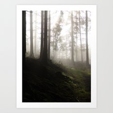 2004 - Serial Killers II - Nature (High Res) Art Print
