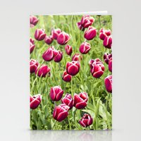 Tulips will remember  Stationery Cards