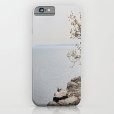 Along the North Shore iPhone 6s Slim Case