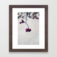 Bacche Framed Art Print