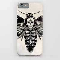 Death's-head Hawkmoth iPhone 6 Slim Case