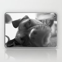 Lazy Dog Laptop & iPad Skin