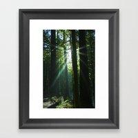 Rays of Light Framed Art Print