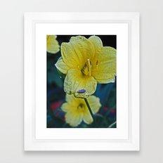 Dew Bug Framed Art Print