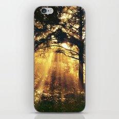 Maybe a dream iPhone & iPod Skin