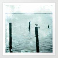 Four Seagulls Art Print