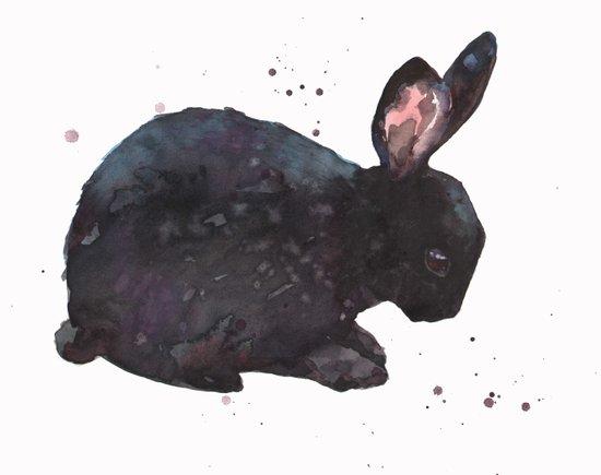 bunny, black rabbit, magic rabbit, rabbit painting,  Art Print