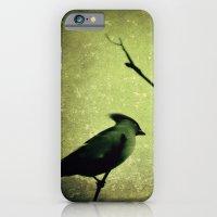 Waxwing iPhone 6 Slim Case
