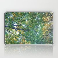 forest 013 Laptop & iPad Skin