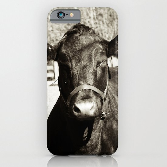 Black Cow iPhone & iPod Case