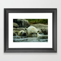 Pole Bears Mother and Little one Framed Art Print