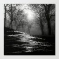 Black And White - From S… Canvas Print