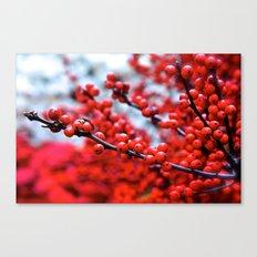 Festive Berries 2 Canvas Print
