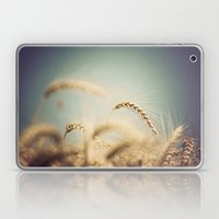 Grain Laptop & iPad Skin