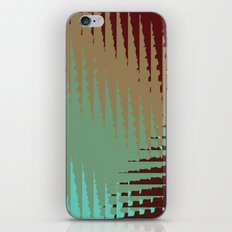 Absolutely iPhone & iPod Skin